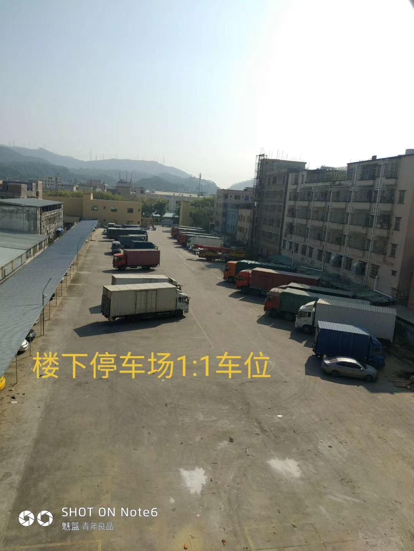 mmexport1543013566043.jpg